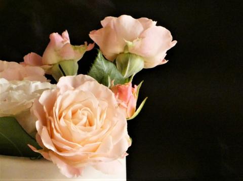 a薔薇.png